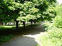 Районний парк Будівельників