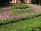 """Районний парк """"Шахтарський"""""""