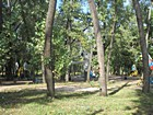 Sport park named after Suvorov