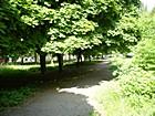 Budivelnykiv district park